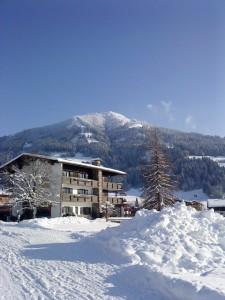Blick auf die Alpenrose in Westendorf