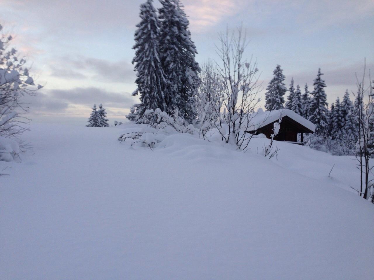 Traumhaft verschneite Winterlandschaft