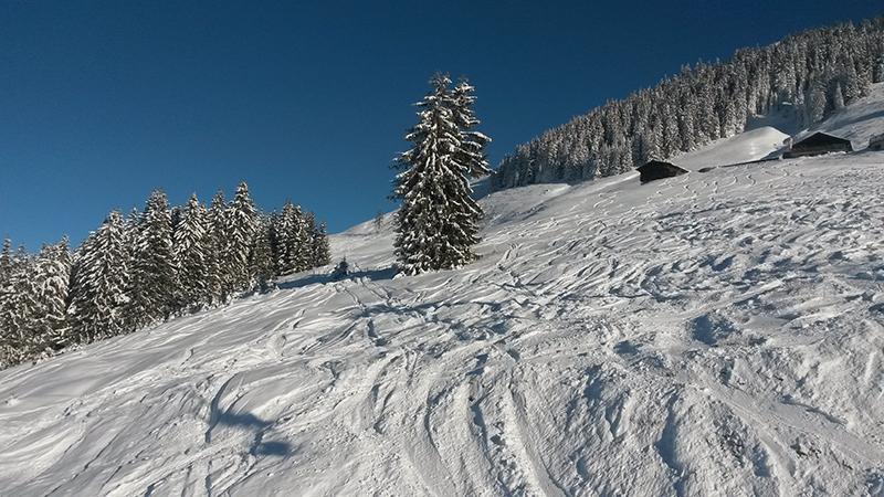 Skifahren in Westendorf