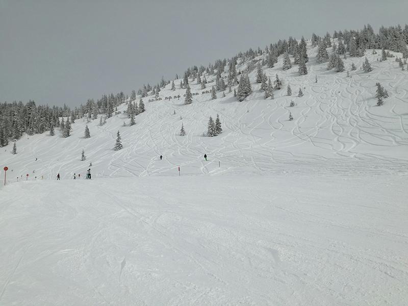 skiwelt wilder kaiser - brixental skifahren