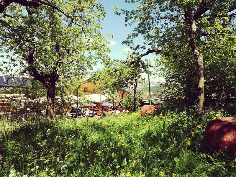 Kirschgarten im Hexenwasser auf Hochsöll