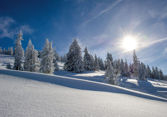 Winterlandschaft in der Skiwelt Wilder Kaiser - Brixental