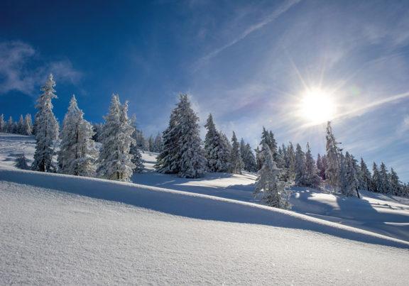 Winterlandschaft in der Skiwelt Wilder Kaiser - Brixental