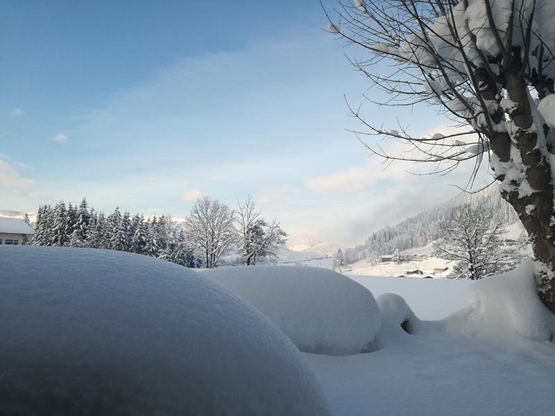 Winter in Westendorf 2019