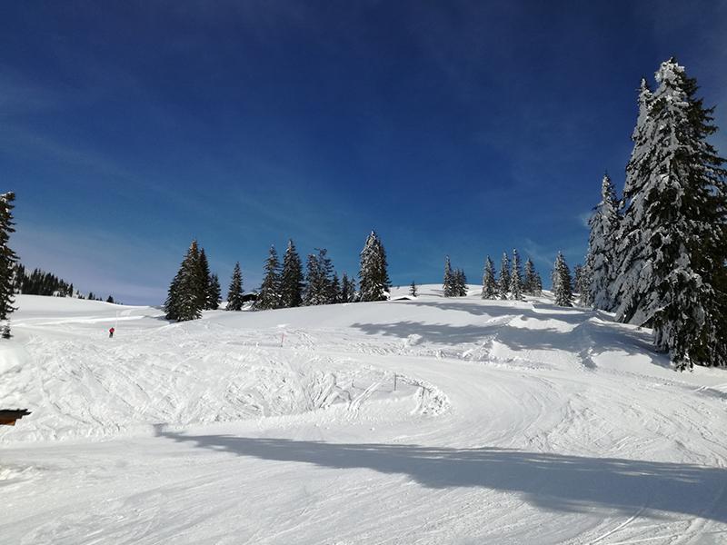Ein perfekter Skitag in Westendorf