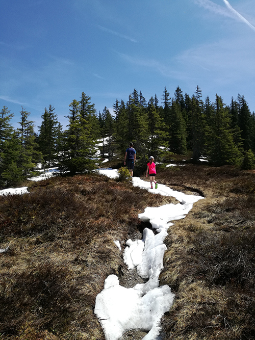 Wanderung im Schnee auf den Gampenkogel in Westendorf