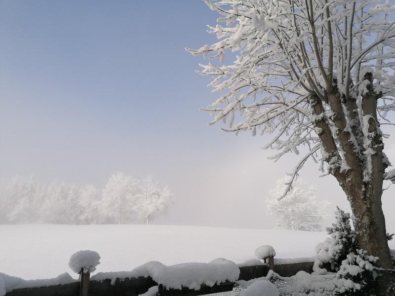 Herrlicher Wintertag in Westendorf