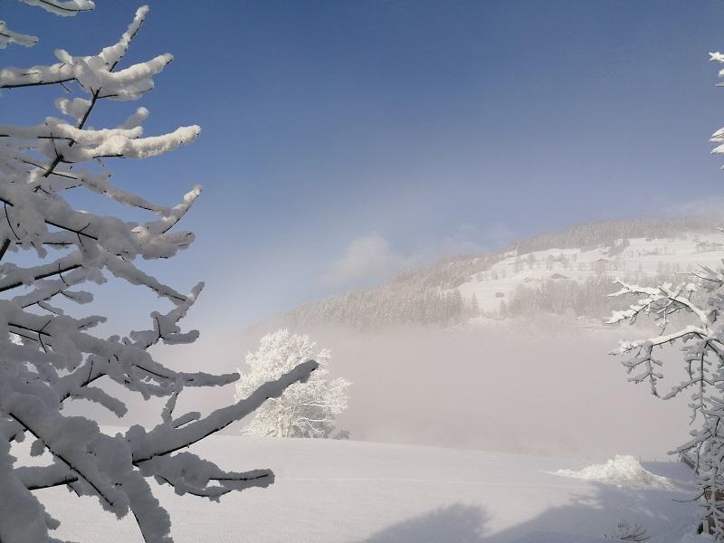 Neuschnee in der SkiWelt Wilder Kaiser - Brixental