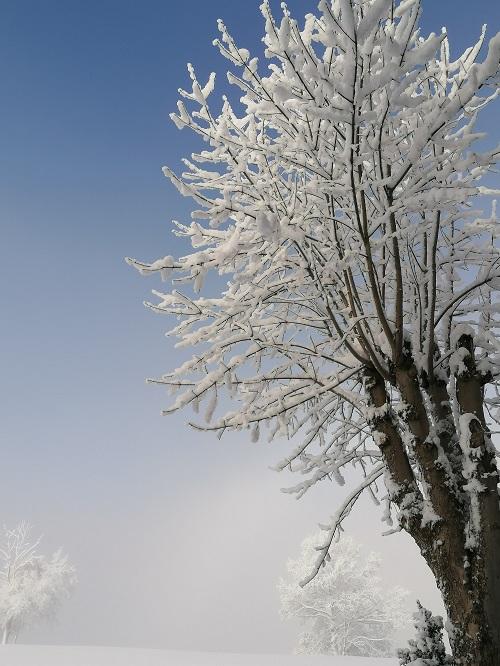 Wintertag in Westendorf wie aus dem Bilderbuch